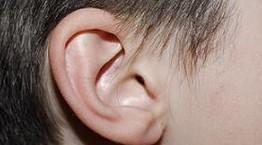 טיפול הומאופתי בדלקות אוזניים